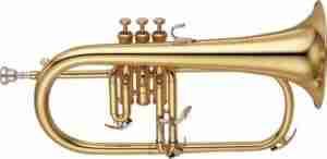Trumpets | Trumpet Headquarters